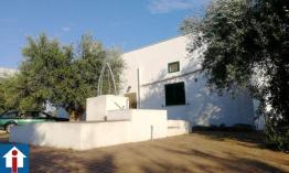 Villa singola con terreno edificabile